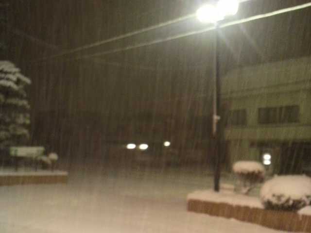 今夜も雪の秋田