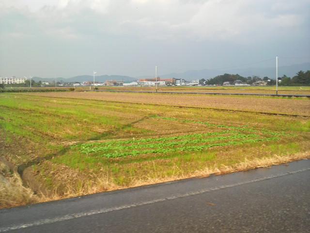 故郷 福井の田園風景
